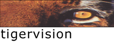 Tigervision - Video Production and Digital Media